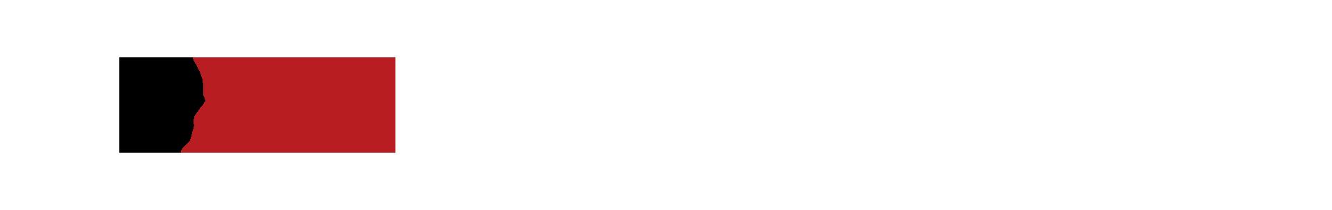 """Kopf-Icon mit Puzzleteil und Schriftzug """"Planspiele & Simulationen"""""""
