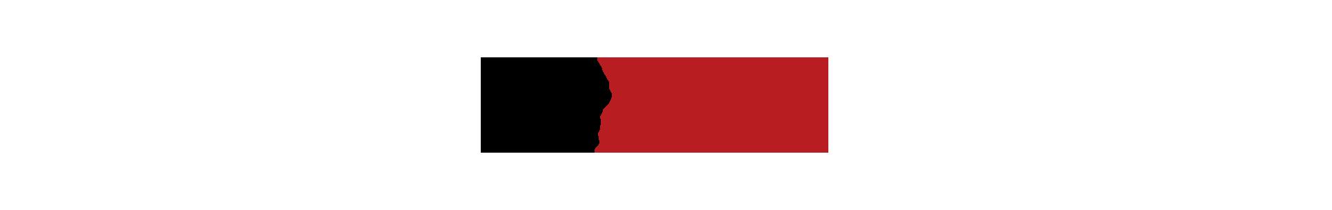 """Icon-Menschen im Kreis und Schriftzug """"Workshops & Ideenwerkstatt"""""""